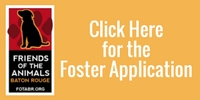 Get the FOTA Fostering Application